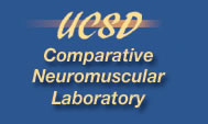 USDA Comparative Neuromuscular Laboratory