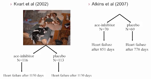 Niek Beijerink's ACE-Inhibitor Studies Comparison.