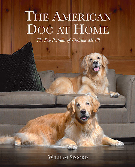 The American Dog At Home