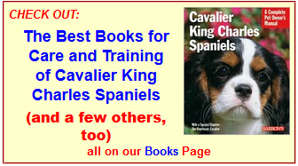 Best Books About Cavaliers