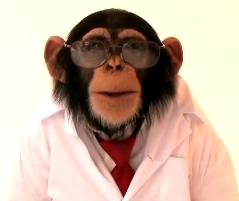 Dr. Chimp