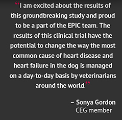 Dr. Sonya Gordon's Pre-Peer-Review Comment About EPIC Results