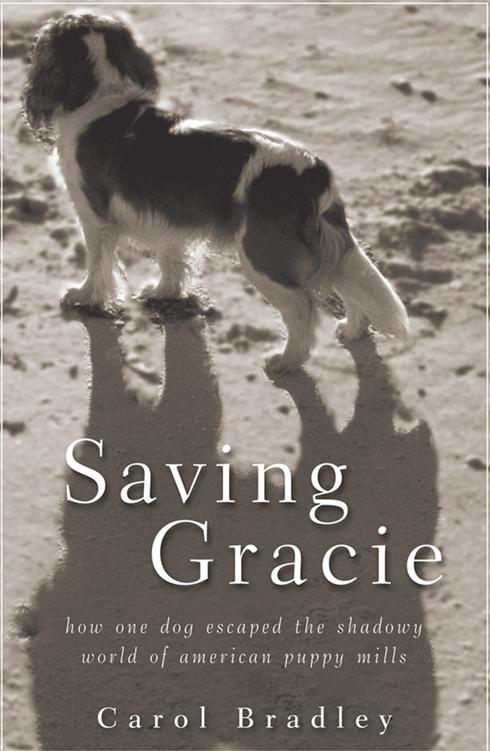 GRACIE BOOK