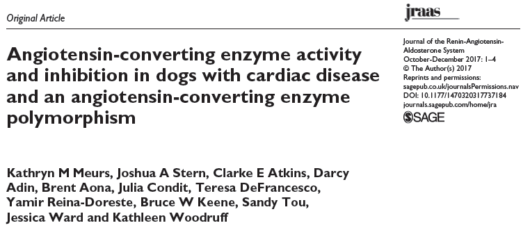Angiotensin-converting enzyme activity and inhibition in dogs with cardiac disease and an angiotensin-converting enzyme polymorphism