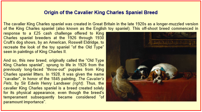 Origin of the Cavalier King Charles Spaniel