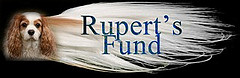 RUPERT'S FUND FOR SM RESEARCH