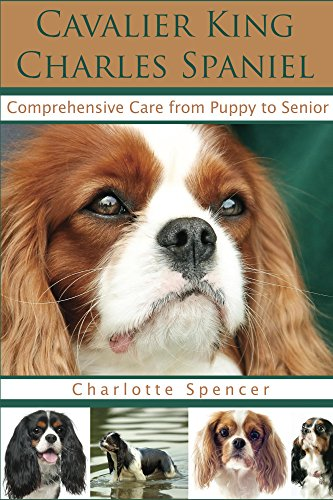 Cavalier King Charles Spaniel: Comprehensive Care from Puppy to Senior