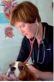 Dr. Rebecca L. Stepien