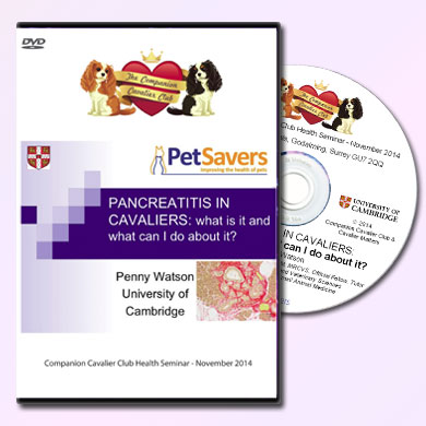 Pancreatitis in Cavaliers